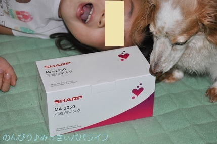 sharpmask04.jpg