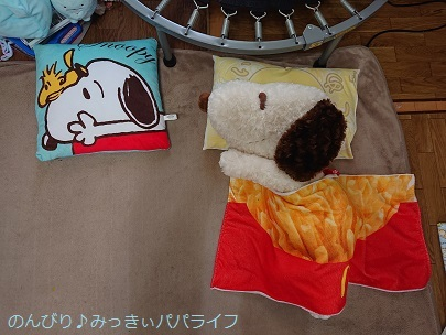 snoopypillow02.jpg