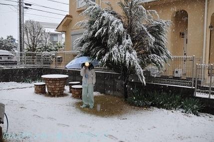 snow20200301.jpg