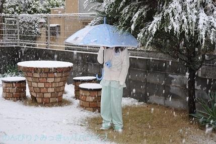 snow20200303.jpg