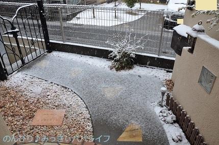 snow20200304.jpg