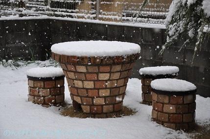 snow20200306.jpg