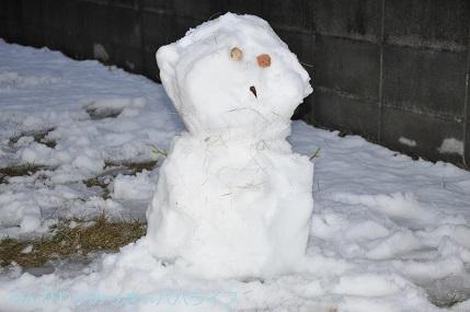 snow20200314.jpg