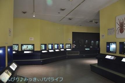 toshimaen95.jpg