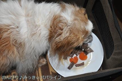 uchinoko202004.jpg