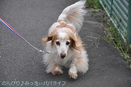 yakiton20201001.jpg