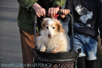 yakitori20200302.jpg
