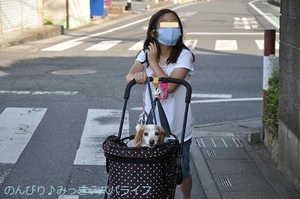 yakitori20200602.jpg
