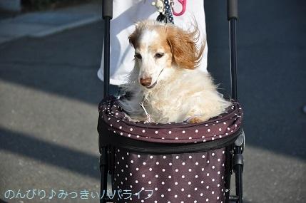 yakitori20200604.jpg