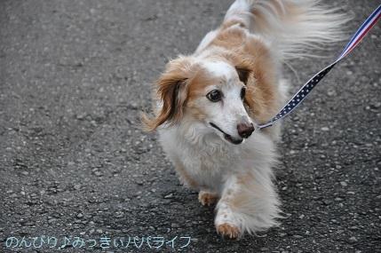 yakitori20200701.jpg