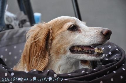 yakitori20200712.jpg