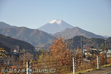 yamanakako2020001.jpg