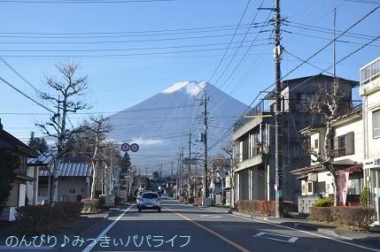 yamanakako2020004.jpg