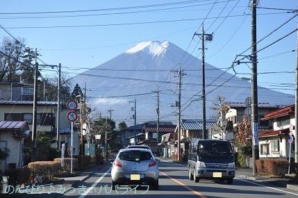 yamanakako2020005.jpg
