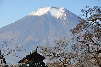 yamanakako2020014.jpg