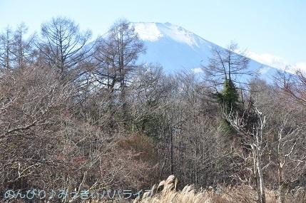 yamanakako2020041.jpg