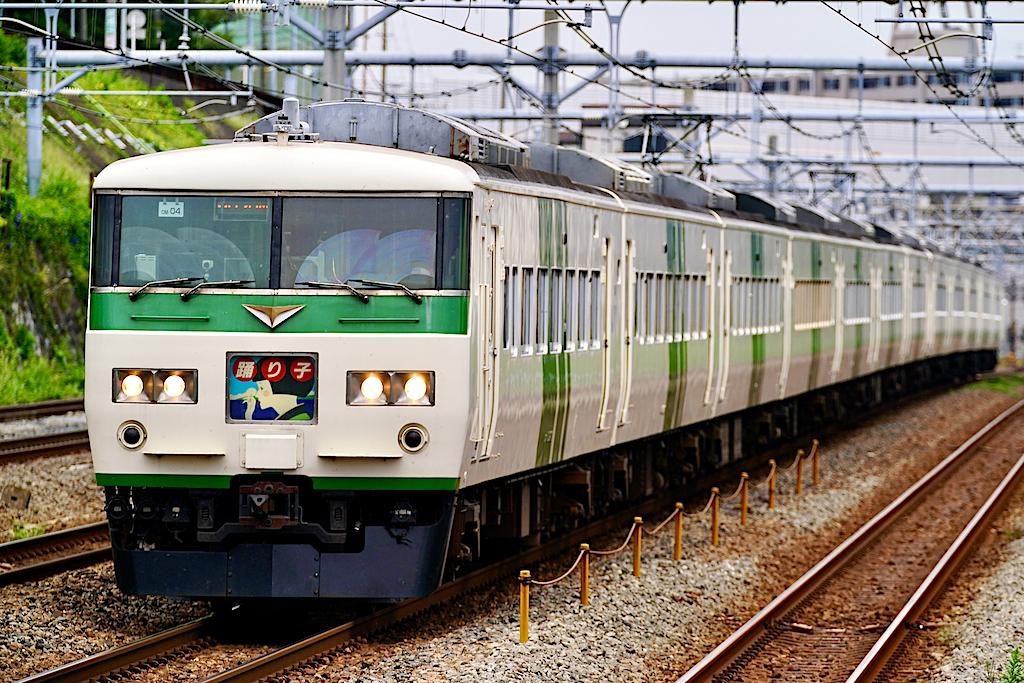 200920 JRE 185 Odoriko 12R shinkoyasu1