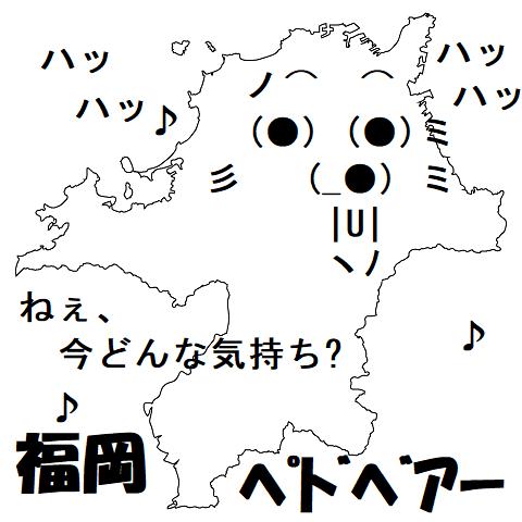 d福岡ペドベアー