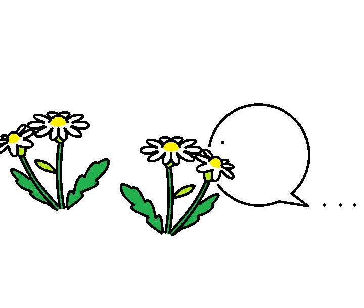 508つちのこお花畑探訪1