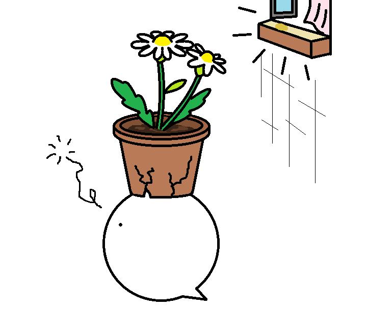 508つちのこお花畑探訪4