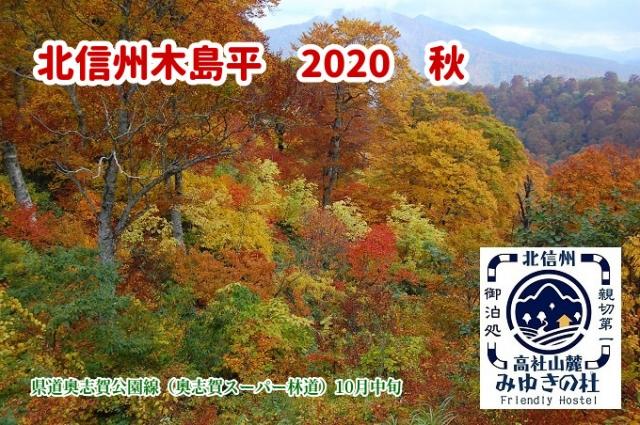 1_202009260957266d5.jpg