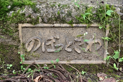 ☆IMGP2721