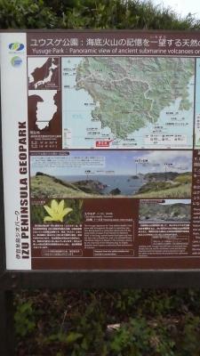 20180818弓ヶ浜059