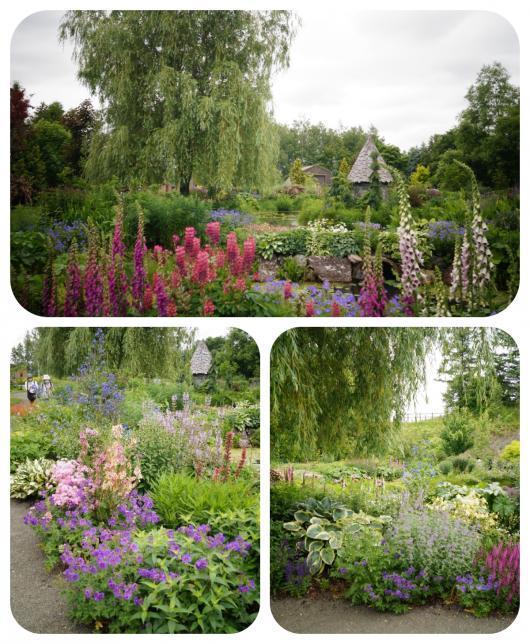 7ノームの庭(1)