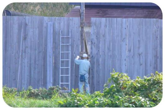 塀の補修1(1)