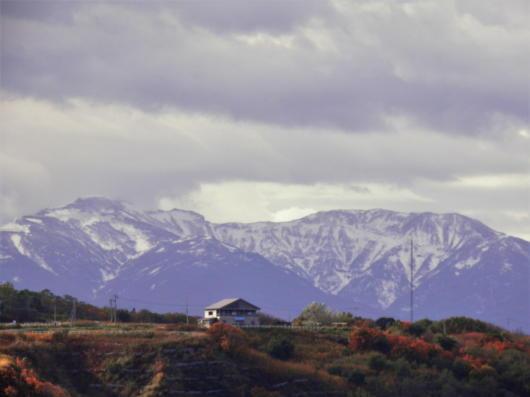 暑寒別岳の冠雪2(1)