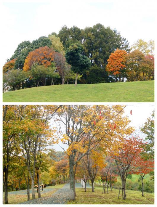 神居岩公園2(1)