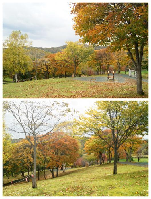 神居岩公園3(1)