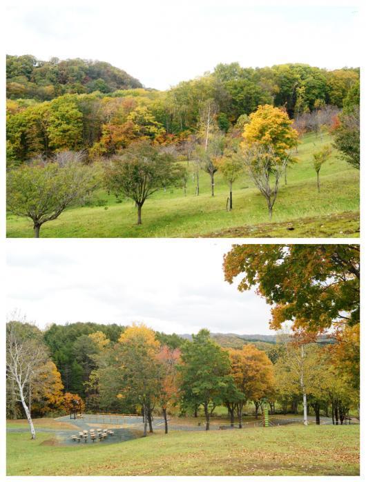 神居岩公園4(1)
