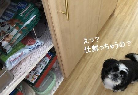 IMG_4167moji.jpg