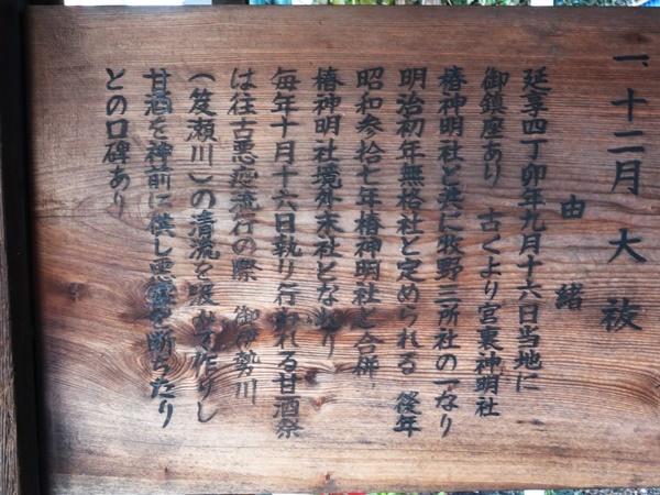 太閤厳島神社5