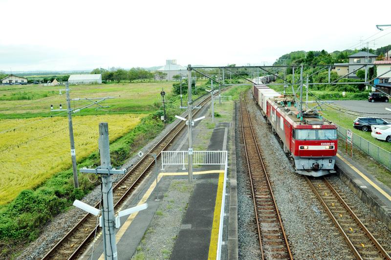 東北新田200927_net2