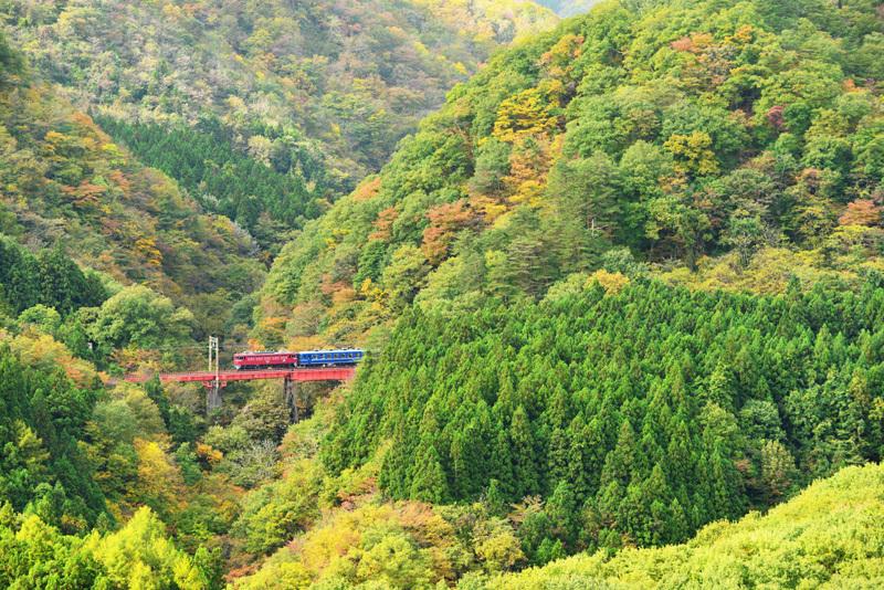 仙山奥新川201025_net