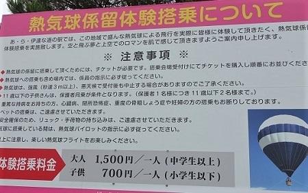 DSC05391 - コピー
