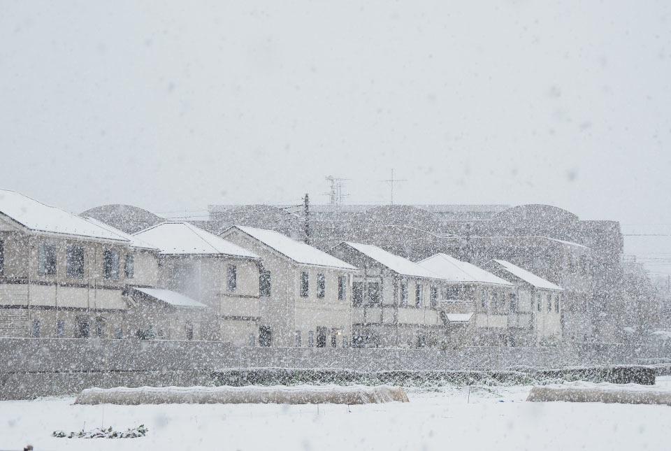 5237 名残雪降りしきる 960×645