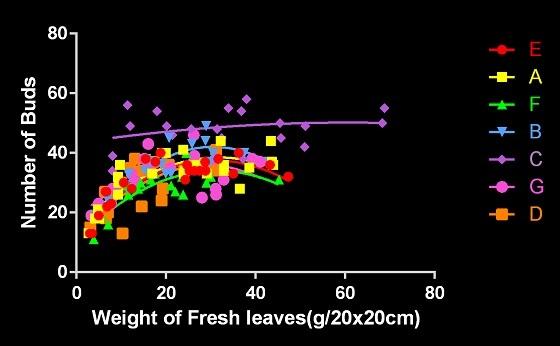 芽数と枠重量a