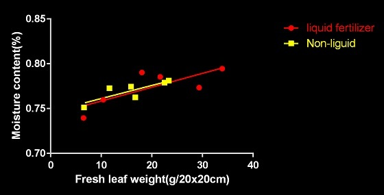 含水率 生重量 R1マルヒ-2