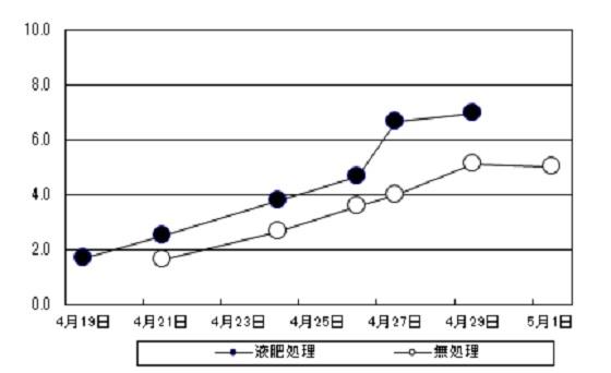 乾物重量増加推移