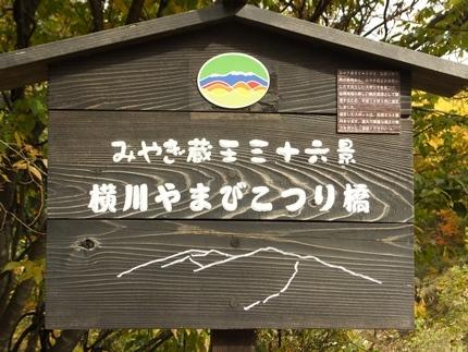 宮城県七ヶ宿町 長老湖・やまびこ吊橋