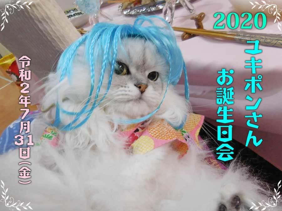 2020-07-31-Fri-01-ユキポンのお誕生日会_DSCN0015