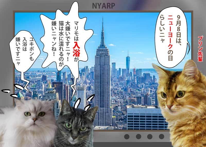 2020-09-08-Tue-01-ニューヨークの日_1183115_l