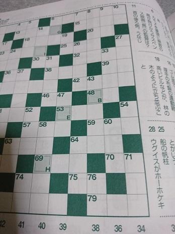 DSC_2386クロスワード