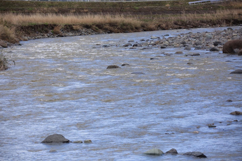 111前日の雨で濁っている川.jpg