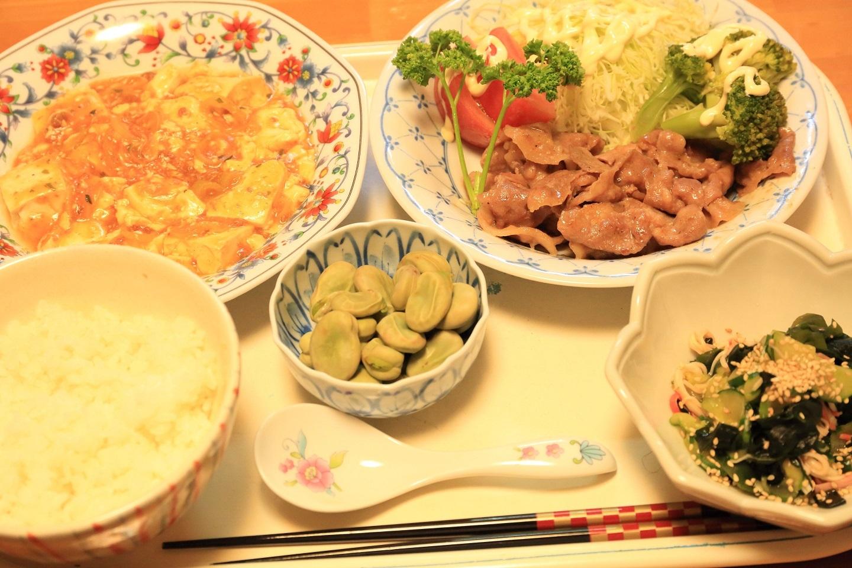 111夕食 ショウガ焼きとマーボ定食.jpg