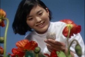 セブンに出演した松坂慶子