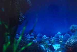 ノンマルトの海底都市